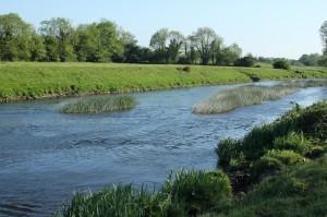 Boyne-Irlande-20122.jpg