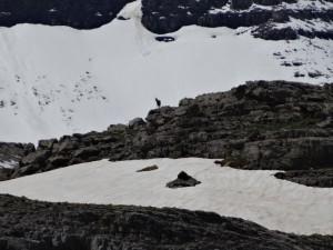 Mont Perdido25