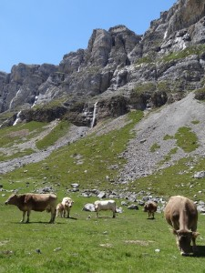 Mont Perdido26