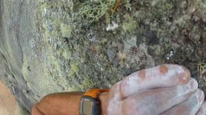 Pedra Riscada 1bis