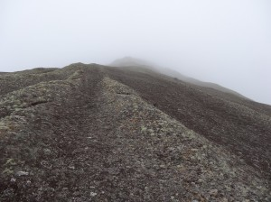 Pedra Riscada16